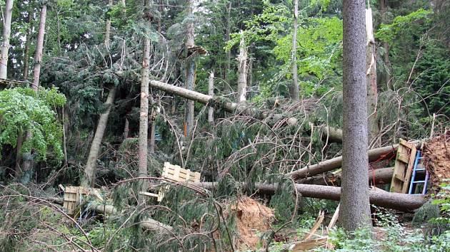 Škody na Dolní Moravě a Králickém Sněžníku