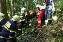 Hasiči zachraňovali v Jablonném dělníka zavaleného pařezem.