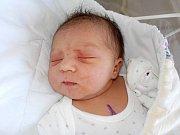 Nela Krištofová se narodila dne 1. 3. v 3.23 hodin jako prvorozená Darině a Jaroslavovi z Králík. Na svět si přinesla váhu 3410 g.