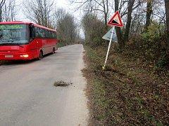 Řidič linkového autobusu u obce Stradouň sjel ze silnice.