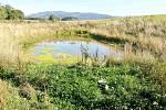 Po realizaci rybníku v Horní Lipce.