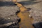Pastvinská přehrada je vlivem sucha skoro bez vody.