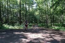Na výlet do přírody kolem Lanškrounských rybníků.