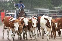 Libchavské rodeo