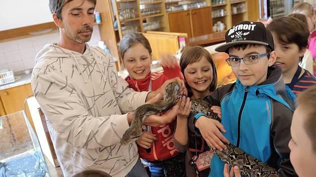 Program pro děti na oblastní chovatelské přehlídce trofejí zvěře v Lanškrouně.