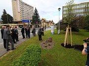 50 let od zahájení výroby bezvřetenových dopřádacích strojů v Ústí nad Orlicí.