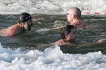 Zimní plavci. Ilustrační foto.