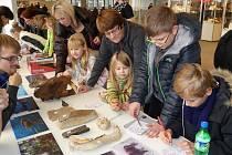 Mezinárodní prodejní výstava minerálů, drahých kamenů, šperků a zkamenělin Minerály Brno.