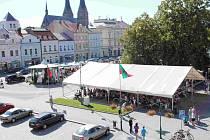Městské slavnosti - Mezinárodní partnerské dny ve Vysokém Mýtě.