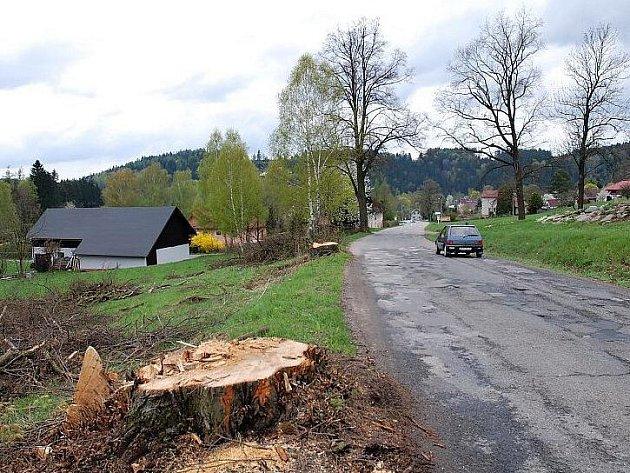 Kácení stromořadí mezi Pastvinami a Mladkovem začalo.