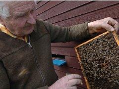 Včelařů ubývá. Proto se kraje rozhodly podpořit začínající včelaře. Na jednu osobu, pokud si zažádá o grant, připadne asi patnáct tisíc korun na nákup základních pomůcek.