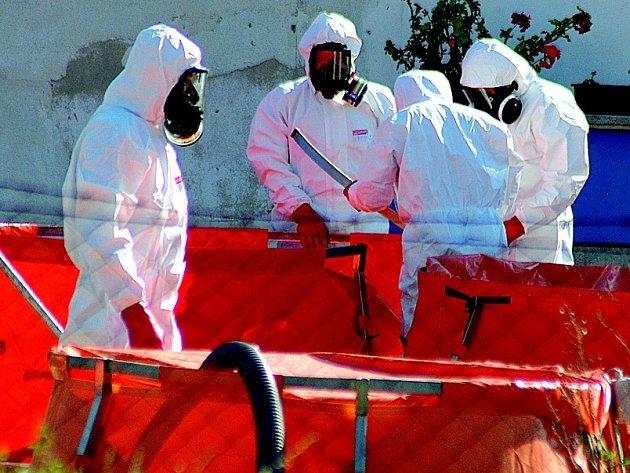 Smrtonosný virus ptačí chřipky byl objeven na saské drůbeží farmě v těsné blízkosti polských a českých hranic. Ilustrační foto