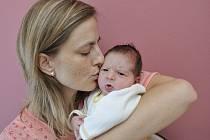 Anna Hájková spatřila svět 12. září v 5.17, kdy se narodila Daně Pávkové a Petru Hájkovi ze Žichlínku. Vážila 3,5 kg.