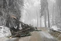 Popadané stromy uzavřely silnici mezi Skuhrovem a Ostrovem na Lanškrounsku.
