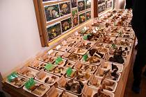 Orlické muzeum v Chocni zaplnila výstava hub