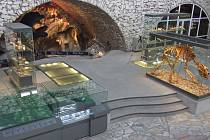Muzeum země.