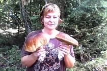 """""""Takové hřiby rostou v Červené Vodě. Větší vážil 730 g a ten menší 540 g,"""" napsala do redakce úspěšná houbařka Jana Grygarová."""