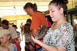 Výstava plazů a drobných zvířat na Pastvinách.