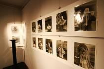 Z výstavy studentů ústecké Střední školy uměleckoprůmyslové v Malé scéně.
