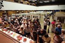 V ústeckém kulturáku vystavuje 41 umělců.