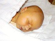 Viktorie Renzová je prvorozená holčička Terezy a Patrika z Dolního Újezdu. Narodila se 27.10. v 3.26 a vážila 3030 g.