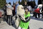 Ze závodů o Pohár Lady Bright Magadan.