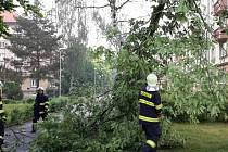 Následky úterní bouře v Pardubickém kraji. Pardubice.