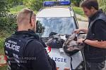 Zadržení sprejeři skončili v rukou policie