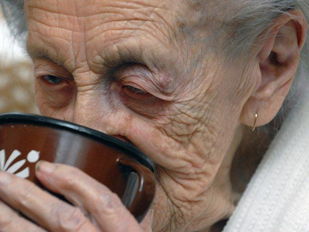 Stopětiletá Anna Kotasová z Přelouče je nejstarší občankou Pardubicka