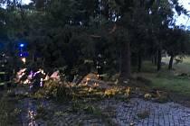 Bouřkou poničené stromy v Lázních Bohdaneč.