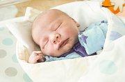 JAN REMEŠ se narodil 13. března v 18 hodin a 28 minut s mírami 3450 gramů a 47 centimetrů. Maminku Markétu podpořil u porodu tatínek David. Doma v Prosetíně na Honzu čeká sedmiletý František, desetiletý Vojtěch a třináctiletý David.