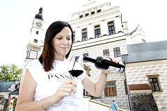 Na zámku cinkaly skleničky a zněla cimbálová muzika.