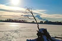 Rybník Buňkov v zimě.