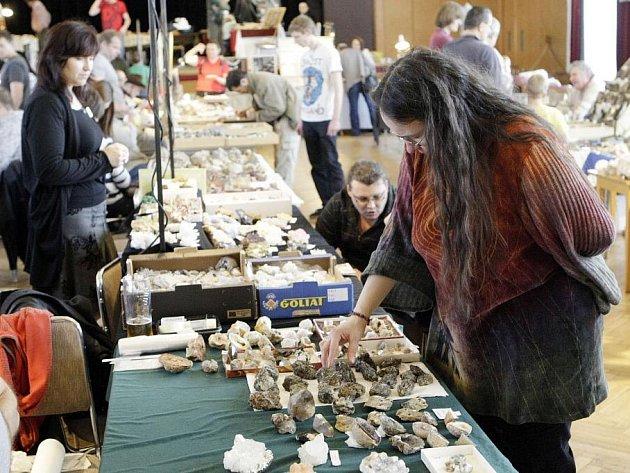 MEZINÁRODNÍ prodejní a výměnná výstava minerálů, šperků a fosílií přilákala do Domu kultury Dukla v Pardubicích šest desítek vystavovatelů a téměř šest stovek návštěvníků.