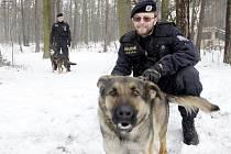 S kontrolou chatové oblasti pomáhali policistům i služební psi