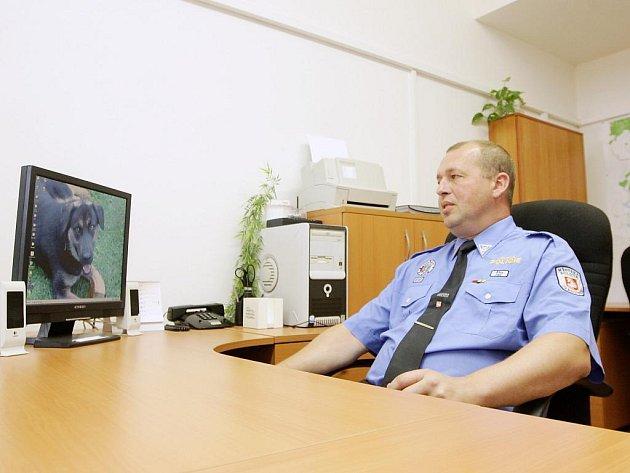 Služebna pardubické městské policie v Polabinách se otevřela v ulici Nová