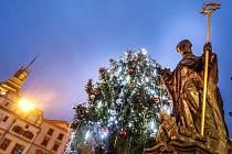 Vánoční strom na Pernštýnském náměstí v Pardubicích
