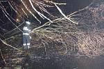 Hasiči odklízejí popadané větve z komunikace , která vede do Depa kolejových vozidel v České Třebové