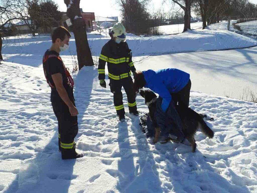 V Srnojedech dnes hasiči zachraňovali psa, pod kterým se probořil led. Na místo byla vyslána profesionální jednotka hasičů z Pardubic.