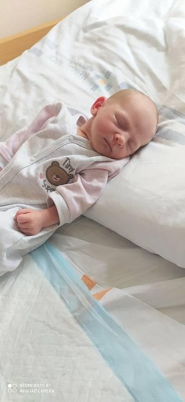 Viktorie Novobilská se narodila 19. 7. v 8.44 hodin. Vážila 2720 g a měřila 45 cm. Velikou radost udělala rodičům Janě a Davidovi z Předhradí. Doma se na sestřičku těšila 5letá Lilianka.