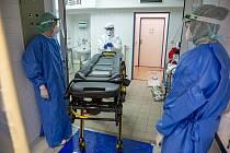 Zdravotnický personál se stará o COVID pacienty na ARO. Jednotky JIP se už dva měsíce uvolňují, pacientů je nyní minimum.