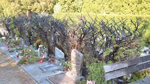 Takhle vypadá hřbitov po požáru. A začíná to jednou svíčkou.