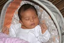 Kateřina Horníková se narodila 1. 12. v 17:02 hodin. Vážila 3,79 kg. Velikou radost udělala mamince Ivaně a tatínkovi Zdeňkovi ze Seče.