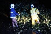 Hasiči také odstraňovali několik popadaných stromů.