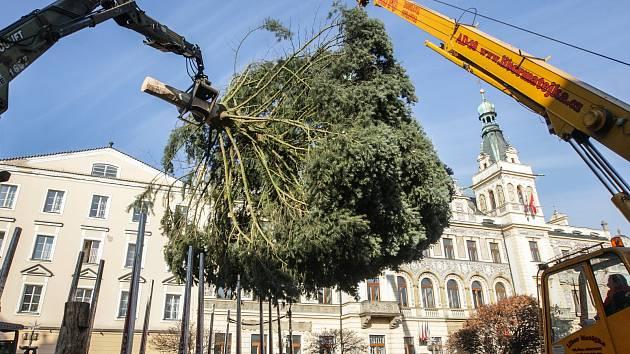 Pardubice už mají svůj vánoční strom na Pernštýnském náměstí.
