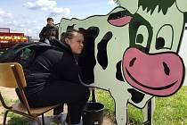 Dojení makety krávy.