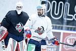 Do pardubického hokejového týmu HC Dynamo Pardubice se vrátil Tomáš Rolínek.