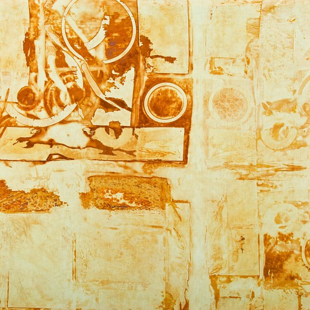 Obraz Šárky Hrouzkové