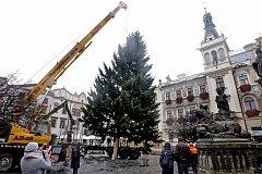 Pernštýnské náměstí už zdobí vánoční stromek.