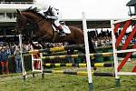 Koně ovládli od pátku do neděle Pardubice
